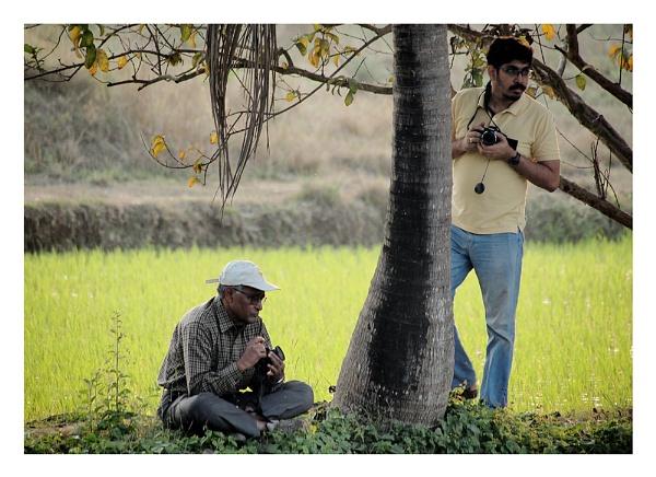 Birding by prabhusinha