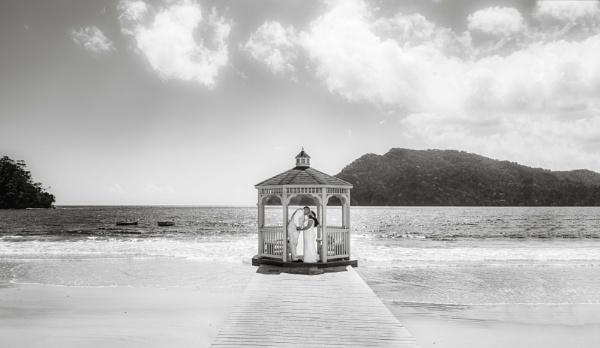 The Beach Wedding by darrylhp