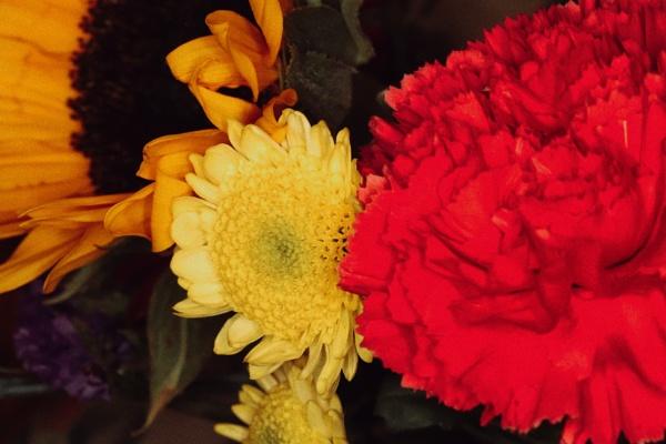 Flowers by Merlin_k