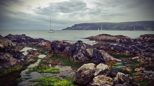 Waterfood - N.Ireland by atenytom