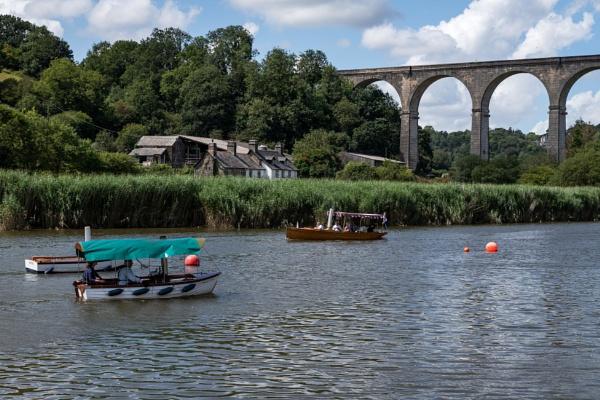 Calstock Steamboats Rally II by Arvorphoto