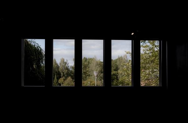 Windows. by kuvailija
