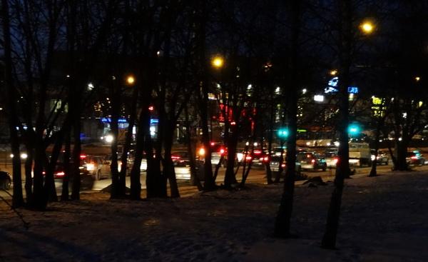 City trees by SauliusR