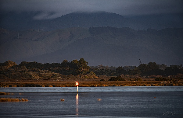 View inland from Manawatu River Estuary (8205) by paulknight