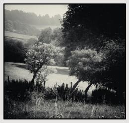 Along the Tunstall road, Weardale