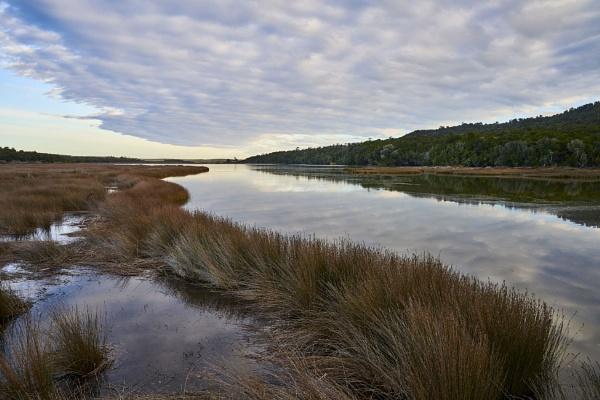 Tautuku Estuary. by Lance_B
