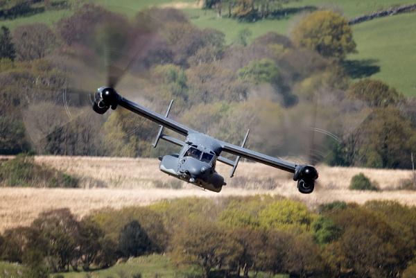 Osprey by John_Wannop