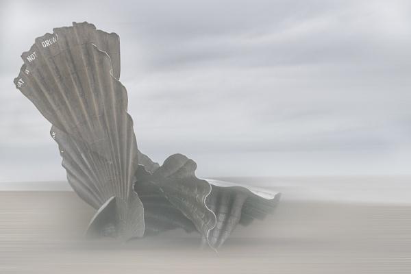 Scallop Shell Sculpture by MAK2