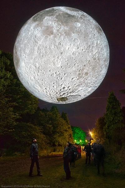 Moongazing by AntHolloway