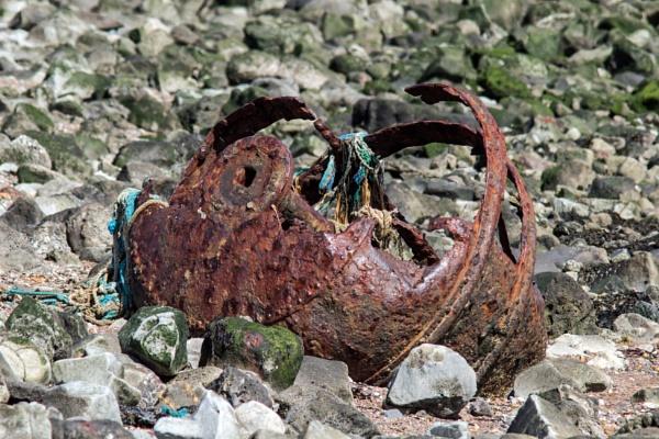 Old buoy? by oldgreyheron