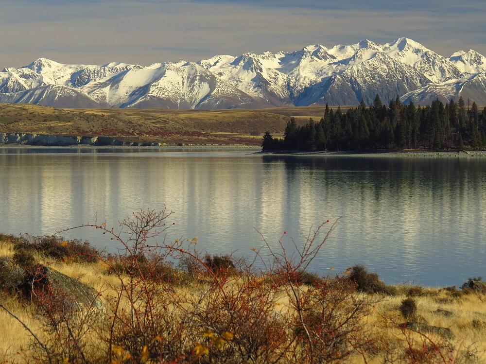 Lake Tekapo 40