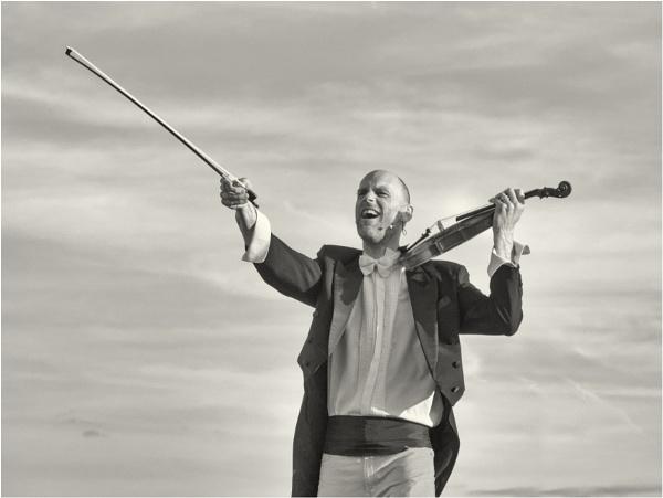 The violinist. by franken