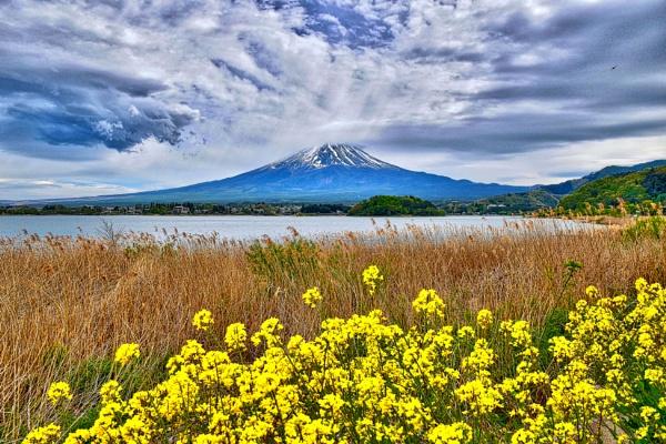 Mountain&Flowers. by WesternRed