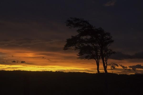 A la cruce de Aguilares - monsoon bliss by annettep38