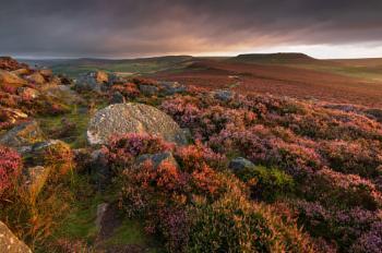 Moorland Quilt