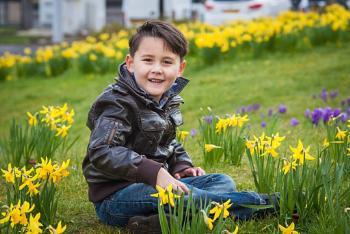 Daffodils:D