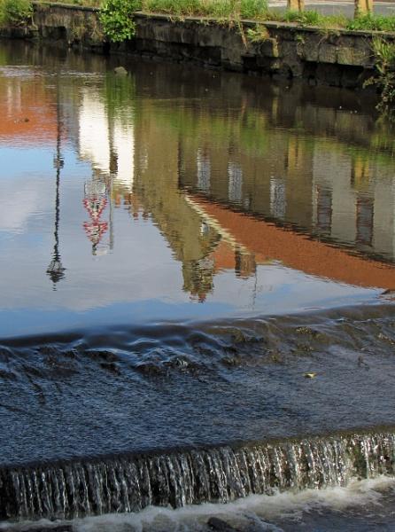 Still waters by oldgreyheron