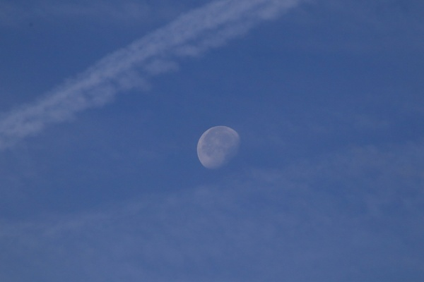 Daytime moon and trails in the sky by mike9005
