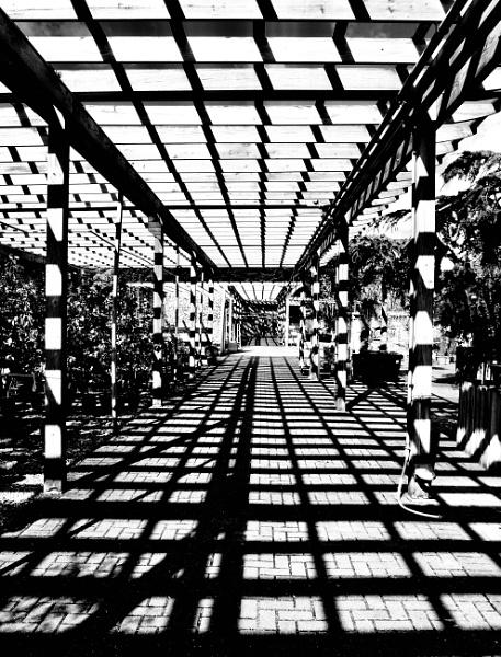 Shadow Grid by nclark