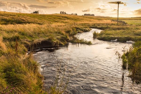 Lookin Downstream by mbradley