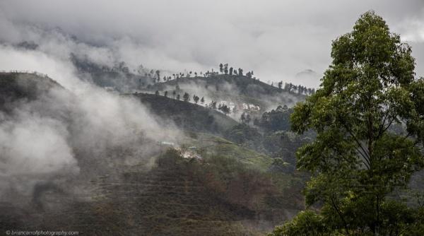 "Misty Mountains by the \""Lovers Leap\"" Tea Plantation, Nuwara Elya,Sri Lanka by brian17302"