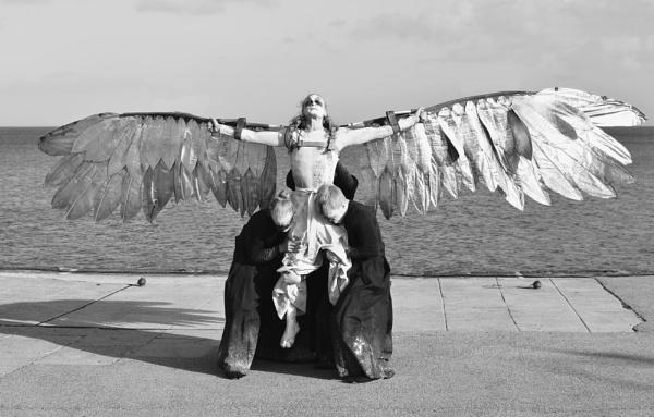 Icarus by PCarman