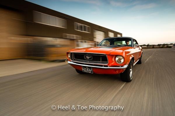 68 Mustang GT Coupe by matthewwheeler