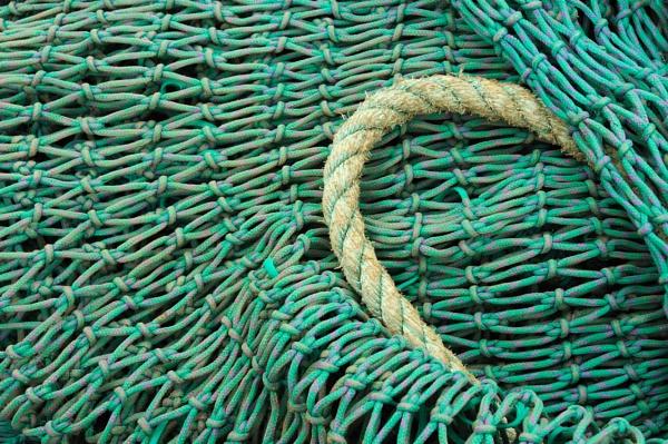 Net by KarlmarxEra
