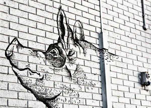 Leeds market graffiti art by stevegilman