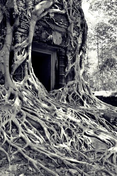 Awesome Angkor .. Prasat Pram by chrisdunham