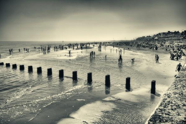 Busy Brid Beach by Alan_Baseley