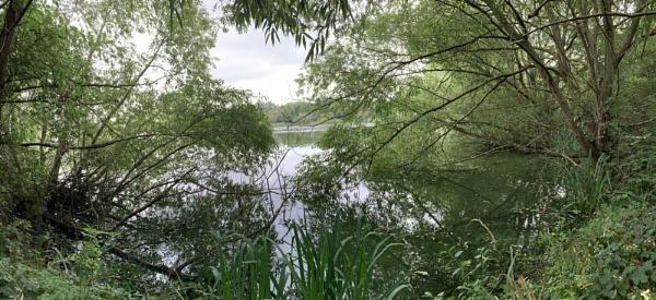 Dishley Pond by RLF