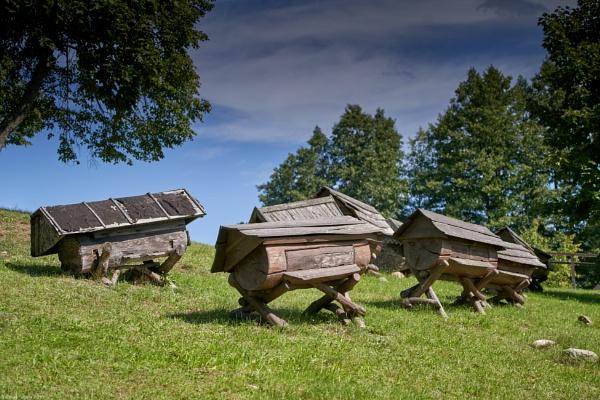 Ancient hives by LotaLota