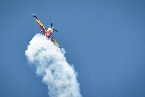 Hawk Flight by ss_silvius