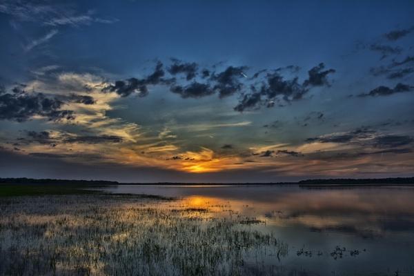 The Myakka River State Park at dusk by jbsaladino