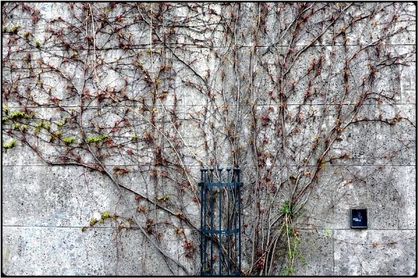 structures by FabioKeiner