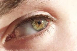 Glistening Eye