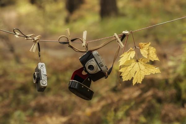 Осень by zdumus