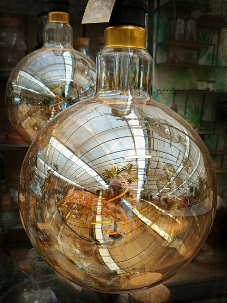 Reflections in a light bulb. by colijohn