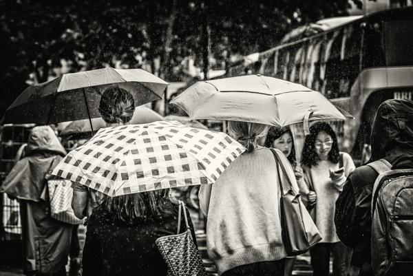rain in the city by mogobiker