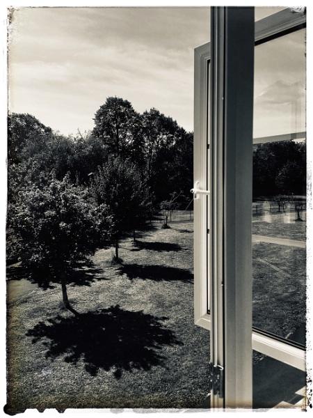 Look through any window by dukes_jewel