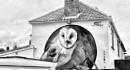Birdhouse by KrazyKA