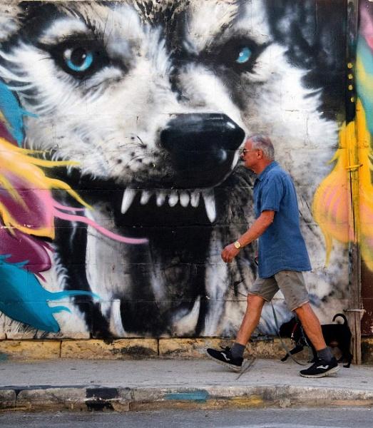 Wolf Graffiti by jflanza