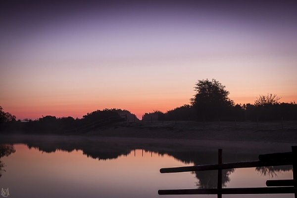 New Forest Sunrise by mohikan22