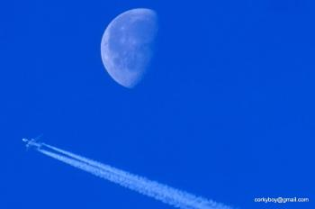 Fly me near the moon..
