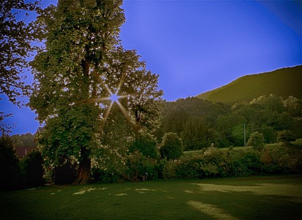 Sunset Rays by LoryC