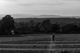 Photo : Across the fields