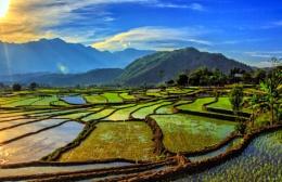 Sunset over the rice paddies in Vietnam
