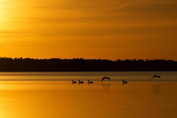 Sunset arrival by jbsaladino