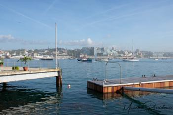 Morning at the marina.